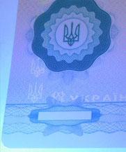 Диплом - свечение УФ (Переяслав-Хмельницкий)